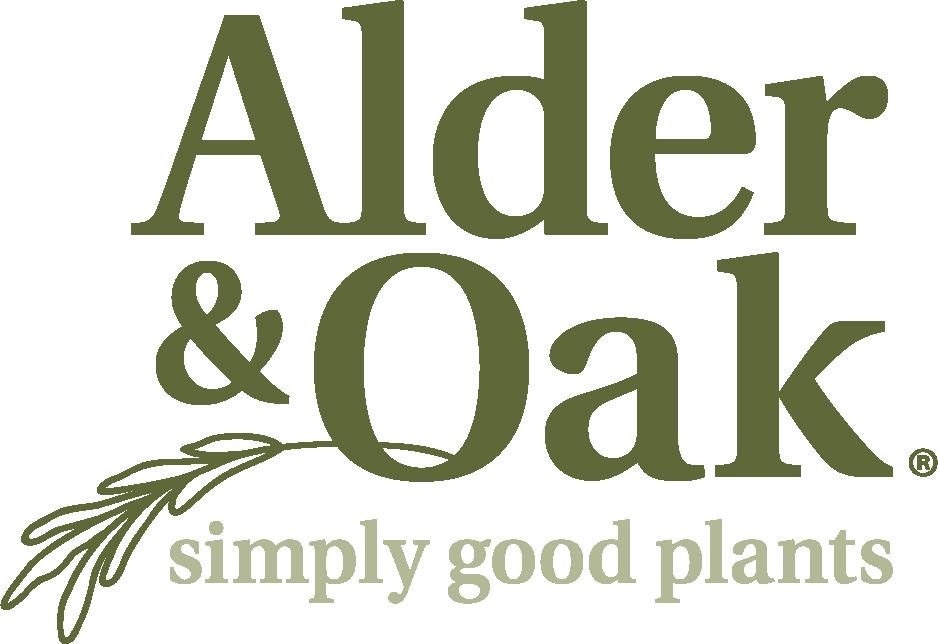 alder and oak logo