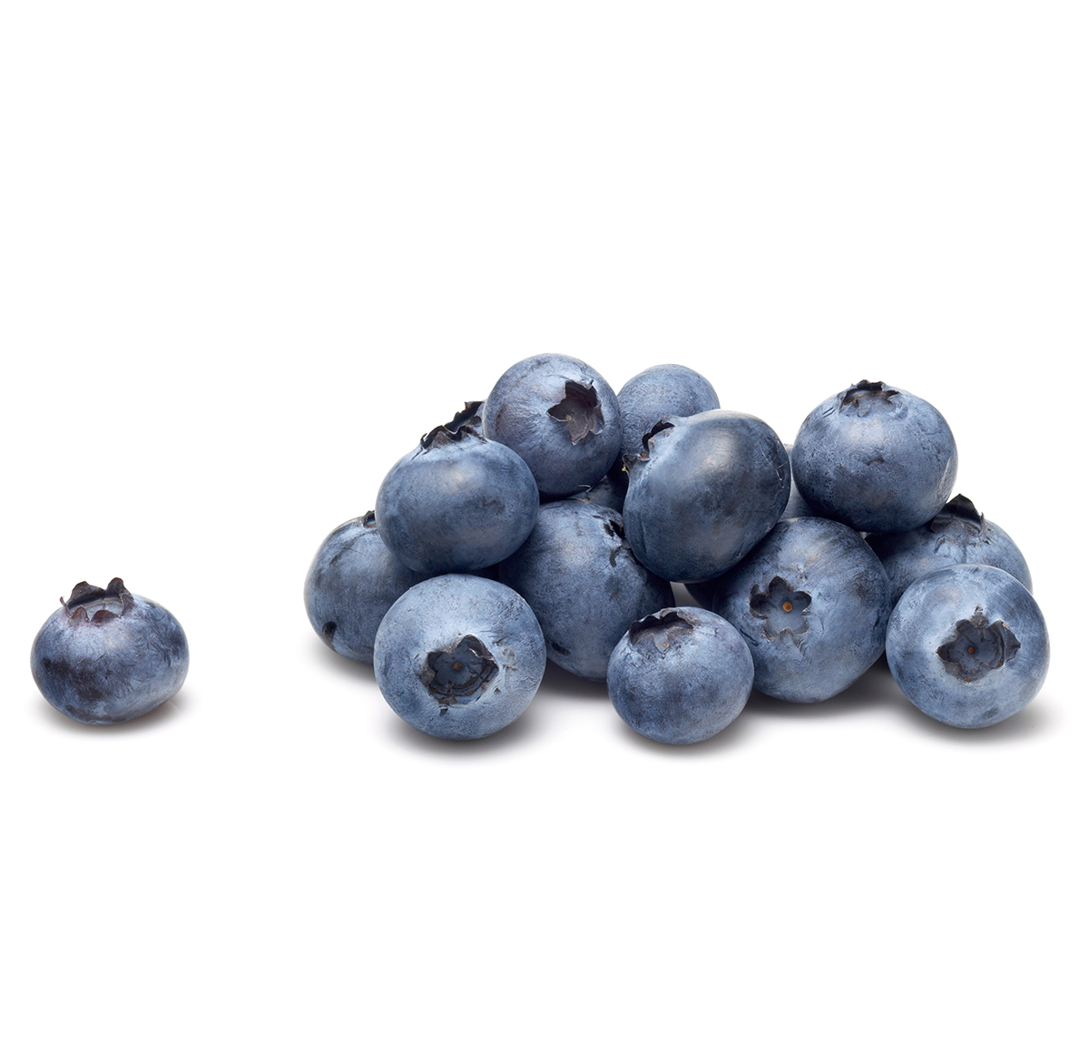 blueberries off the vine are sublime
