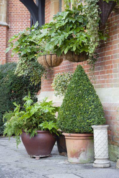 English garden pots image